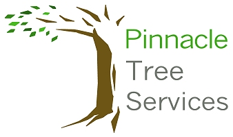 Pinnacle Tree Services